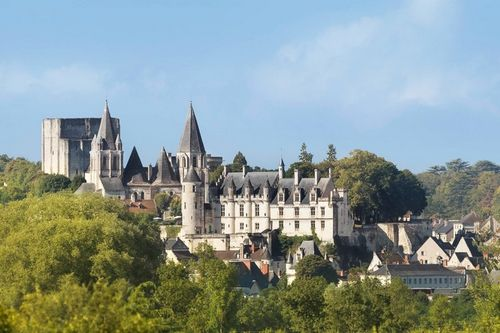 carte grise Loches